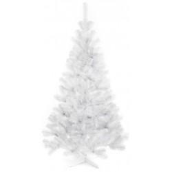 Piękna CHOINKA jodła biała 160 cm - MCHB01/160